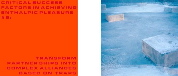 Critical Success Factors in Achieving Enthalpic Pleasure #5: Transform partnerships into complex alliances based on traps, 2000 two c-type colour photographs